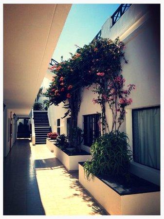 Apartamentos La Morana: Beautiful Hotel surroundings