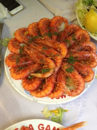 El Rey de la Gamba-2: Great shrimp