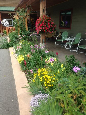 Adventure Inn: Flower bed