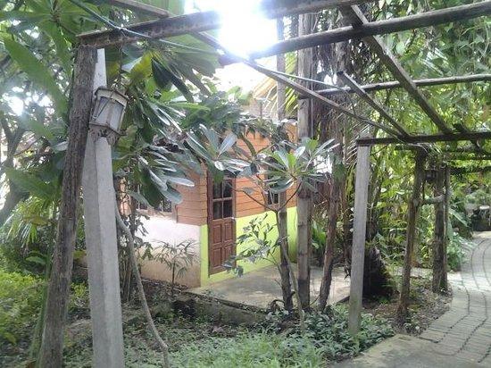 Sabaidee Guesthouse : Mon p'ti bungalow au milieu de la végétation