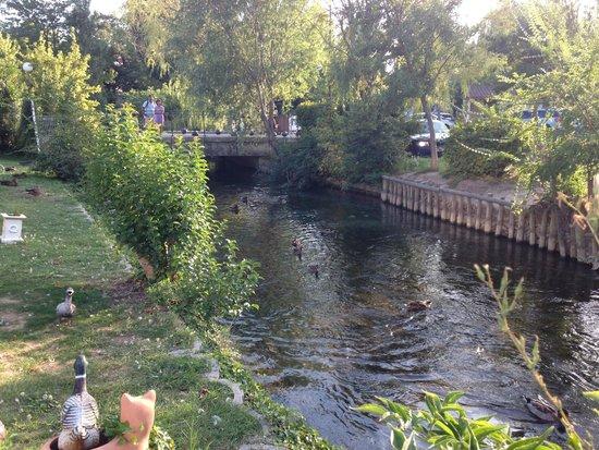 Hotel Les Nevons : Vue dans le jardin