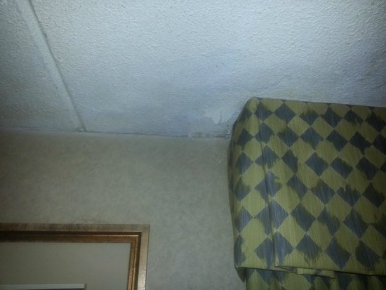 Baymont Inn & Suites Michigan City: ceiling 2