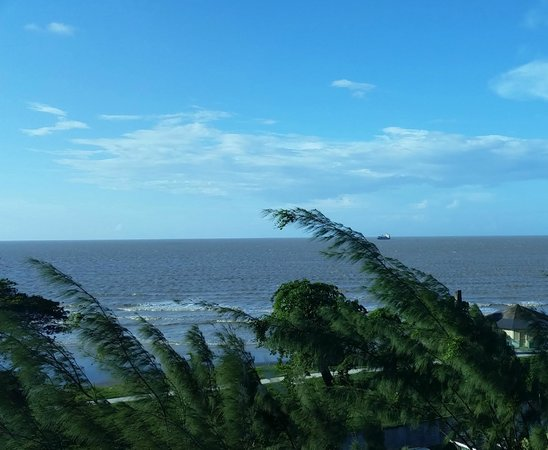 Pegasus Hotel Guyana: my view from my window in the room
