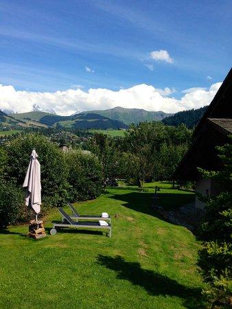 Alpaga : Vue sur le Mont Blanc