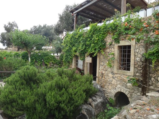 Grecotel Creta Palace Hotel : Agrecofarm
