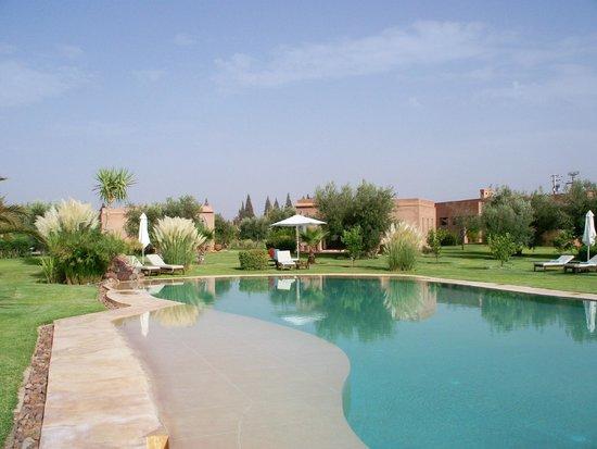 Oasis Jena : piscine