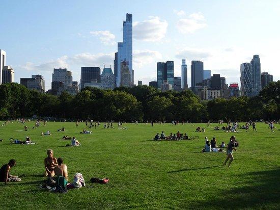 Central Park: Gramados para esquecer a metrópoles ao fundo.