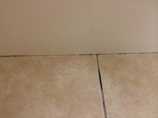 Country Inn & Suites By Carlson, Michigan City: Mold on the floor by bathtub