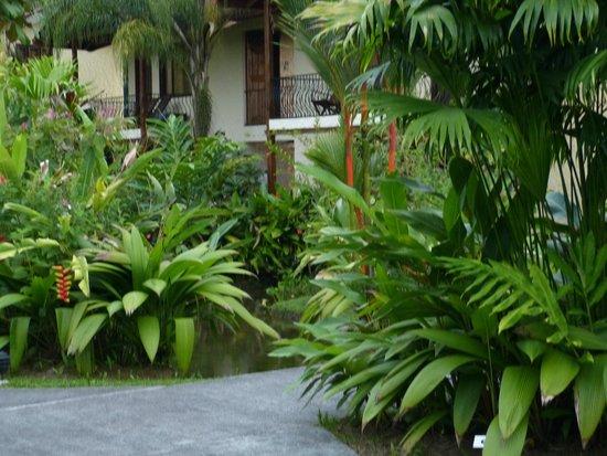 Casa Luna Hotel & Spa: notre chambre