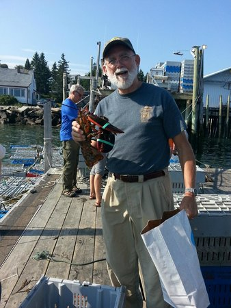 Oakland House Cottages by the Side of the Sea: Freshest lobster ever - visit Stonington Lobster Co-Op on Deer Isle.