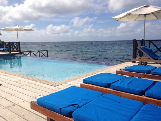 Scuba Lodge & Suites: Seafront infinity pool