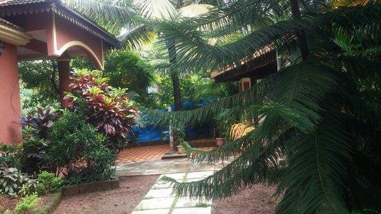 Victoria Villa: The lawn
