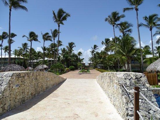 Sirenis Punta Cana Resort Casino & Aquagames : Promenade dans l'hôtel