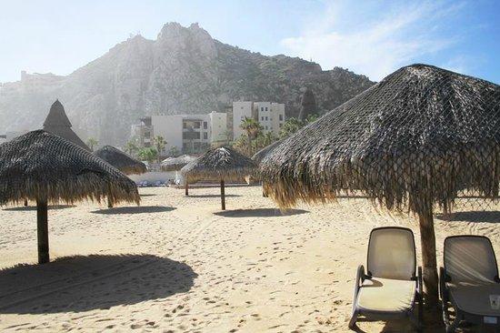 Sandos Finisterra Los Cabos : Beach