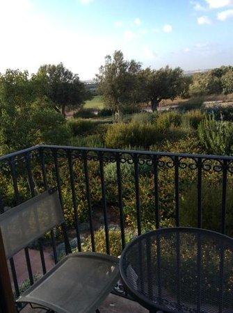 Donnafugata Golf Resort & Spa : La vista dalla mia camera