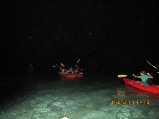 Cayman Kayaks: gorgeous trip
