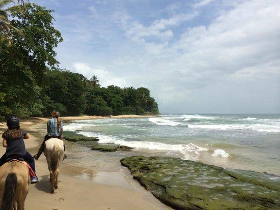 Caribe horse riding Club