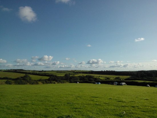 Westland Farm: View from our tent