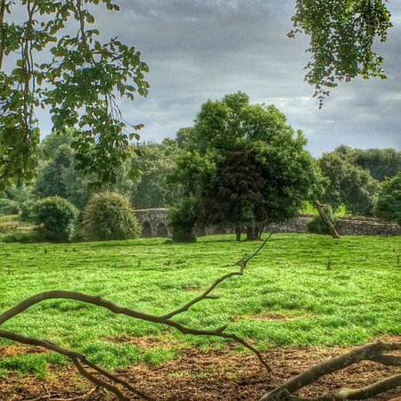 Beautiful Meath Tours: rivers and lush green