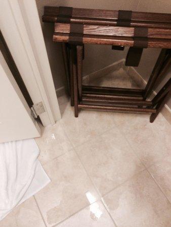 Westin Charlotte : Water under the door