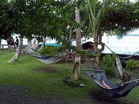 Spencer's Seaside Lodge: Hammocks between rooms and the sea