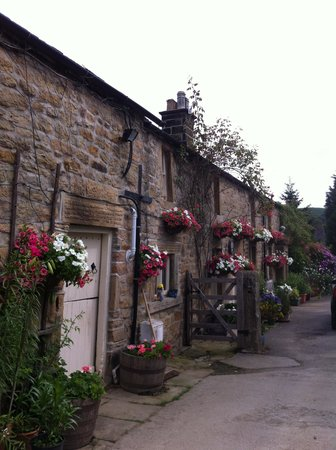 Fold Farm Guest House: down the lane