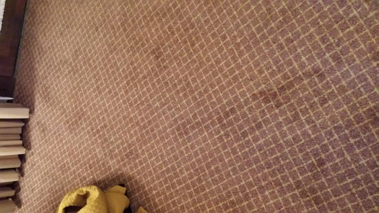 Embassy Suites by Hilton Chicago - Schaumburg/Woodfield: More dirty carpet