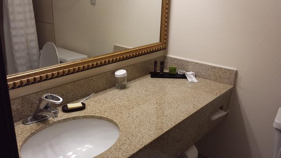 Embassy Suites by Hilton Chicago - Schaumburg/Woodfield: Bathroom