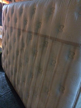 Super 8 San Diego Hotel Circle : mattress marinated in huge puddle of urine