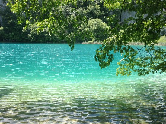 Plitvice Lakes : The very clear water
