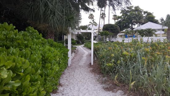 Wicker Inn: the road between cottages and the beach