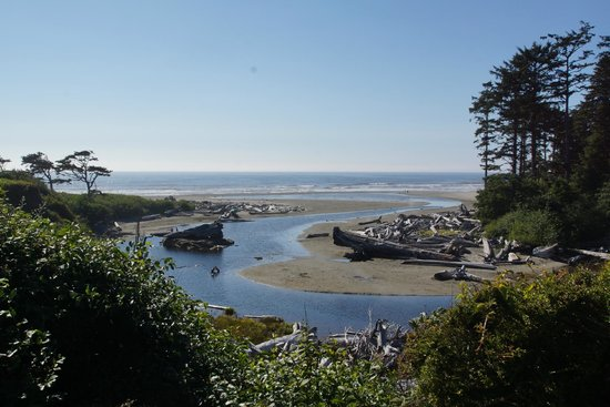View from Kalaloch Lodge room