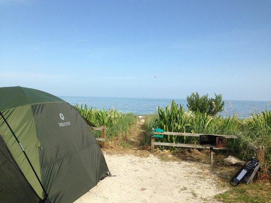 Bahia Honda State Park Campgrounds: Sandspur Campsite