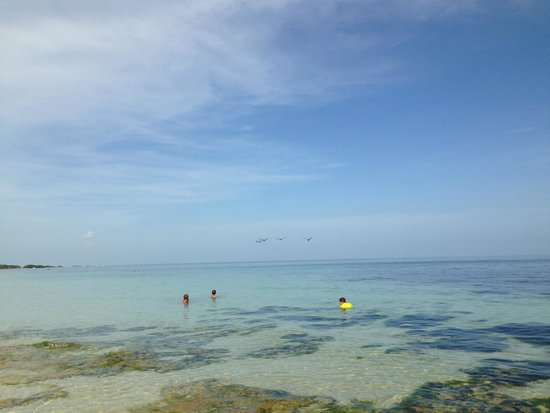 Bahia Honda State Park Campgrounds: Crystal clear waters at Sandspur Beach