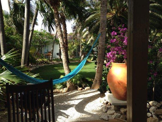 Boardwalk Hotel Aruba : Il giardino