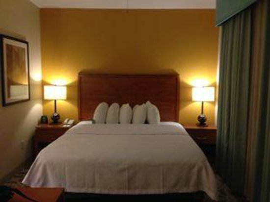 Homewood Suites by Hilton Irving - DFW Airport: Comfortable king size bed