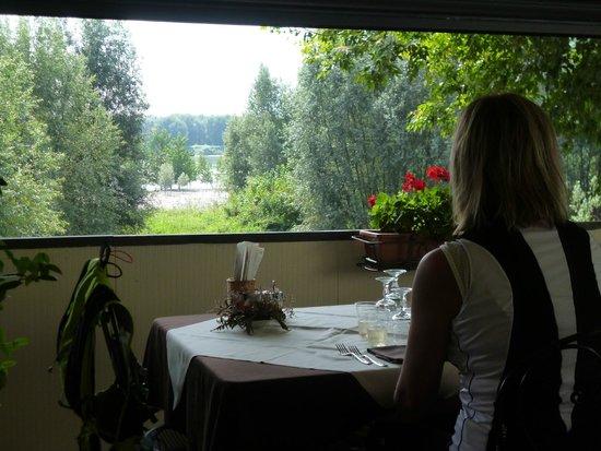 la vista - Foto di Le Terrazze Sul Po, Borgoforte - TripAdvisor