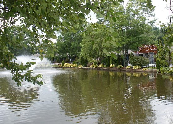 Village Inn of Blowing Rock: pond and hotel entrance