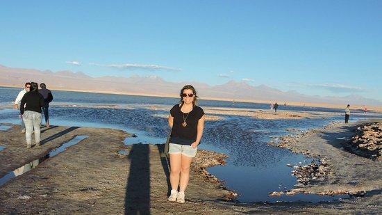 Atacama Dessert: Laguna Tebinquinche
