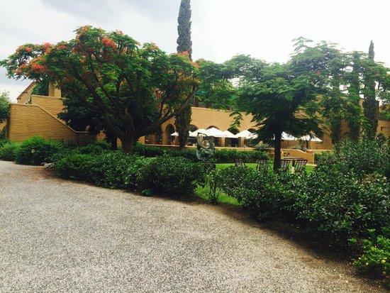 Mision del Sol Resort and Spa: vista  desde habitación