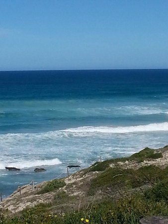 De Hoop Nature Reserve : The big ones are out there...be patient you won't wait long.