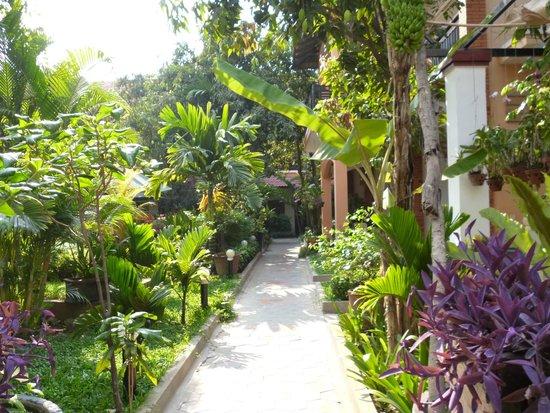 Central Boutique Angkor Hotel : Pasillo que rodea la piscina, alredrdor del cual se ubican las habitaciones