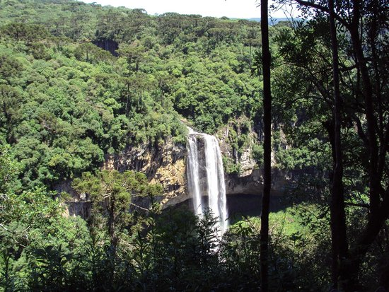 Parque do Caracol: foto  cascata   do caracol  , canela rs