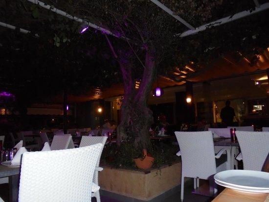 Restaurant Ses Oliveres: 2