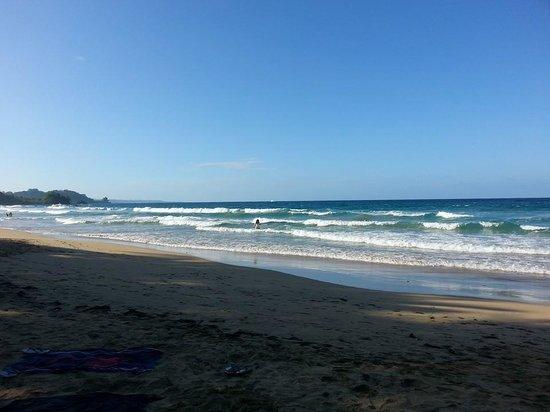 Red Frog Beach : Playa en la reserva Red Frogs Bocas del Toro, Panamá