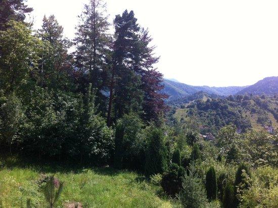 Pensiunea Toscana: Umgebung