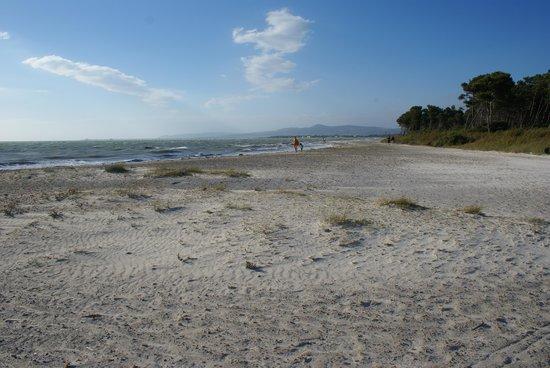 Camping Molino a Fuoco: la spiaggia