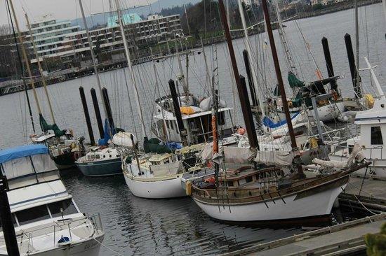 The Fairmont Empress: Pier in front