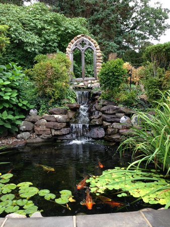 Hamanassett Bed & Breakfast: Koi Pond