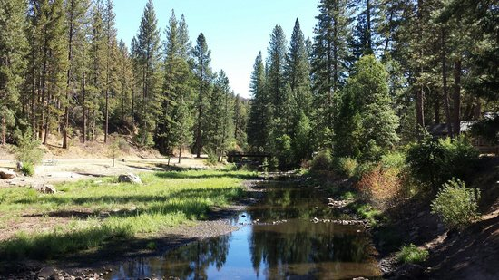 Yosemite Lakes RV Resort : View from the tent side